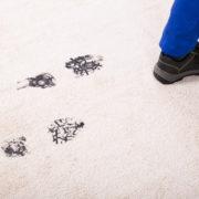 mats protect